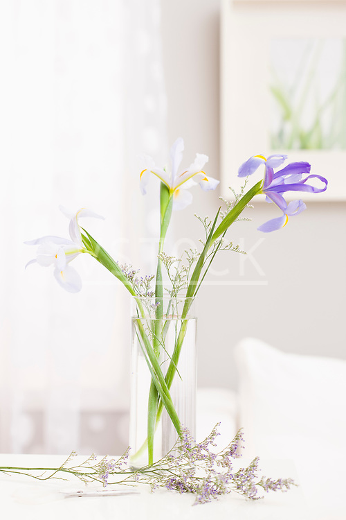 Flowers in vase and on table
