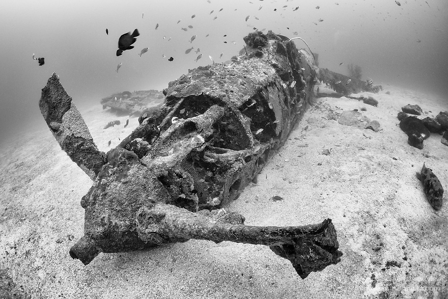 Munda, Western Province, Solomon Islands; a Bell P-39 Airacobra fighter plane, which crashed into the sea during WWII, resting upright on the sandy bottom, one wing and its propeller still intact