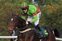 Victor Leudorum ridden by A P McCoy in jumping action during the October Handicap Chase