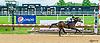 Saint Penny winning at Delaware Park on 6/7/17