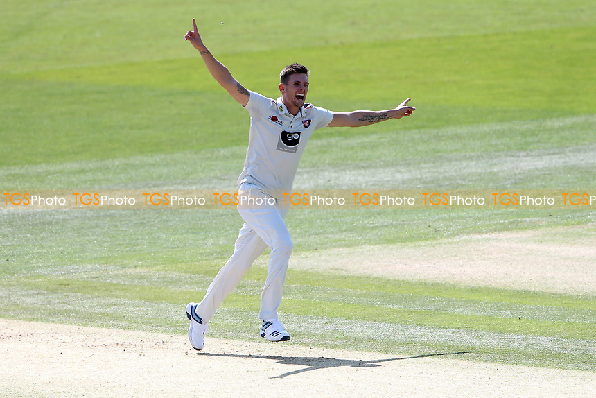Harry Podmore of Kent celebrates taking the wicket of Ravi Bopara during Kent CCC vs Essex CCC, Specsavers County Championship Division 1 Cricket at the St Lawrence Ground on 20th August 2019