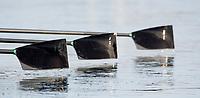 Putney, London,  Tideway Week, OUWBC. Oxford, Blades,  Championship Course. River Thames, <br /> <br /> Tuesday  28/03/2017<br /> [Mandatory Credit; Credit: Peter Spurrier/Intersport Images.com ]