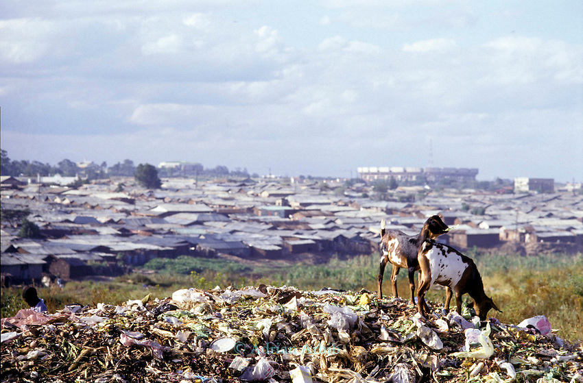 Kibera shanty in Nairobi, capital city of Kenya.  Kibera is  arguably the worlds' largest squatter town being homeot more than 1,000,000 people.