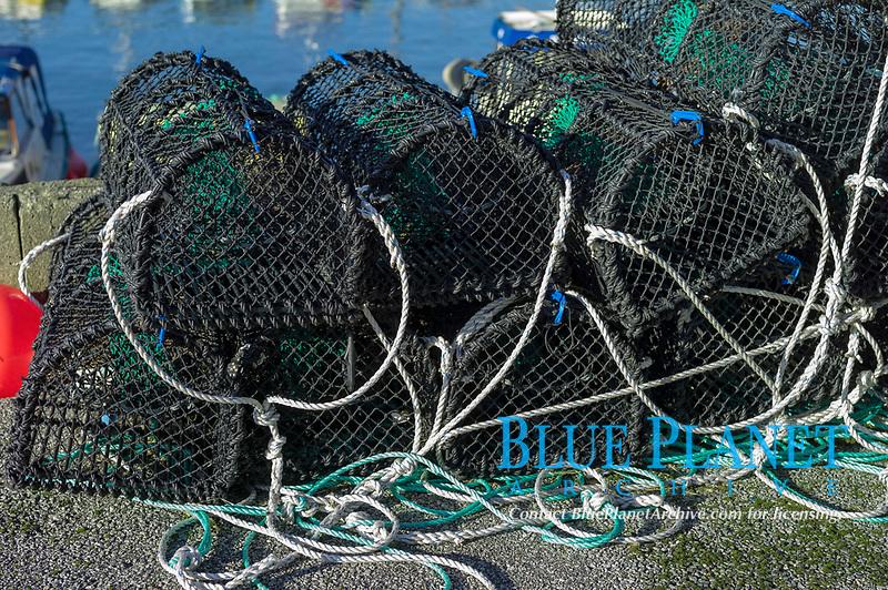 Crab fishing net, Bryne, Rogaland, Norway, Europe