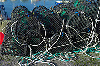 Crab fishing net, Bryne, Rogaland, Norway, Europe