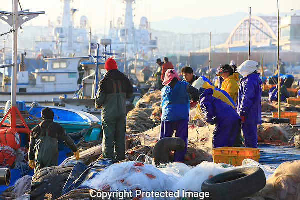 Asie, Corée du Sud, Sokcho, port de pêche//Asia, South Korea, Sokcho, fishing harbour