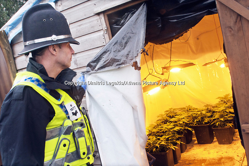 COPY BY TOM BEDFORD<br /> Pictured: South Wales Police officers at the site of the cannabis factory at a travellers' site in Merthyr Tydfil, south Wales, UK.<br /> Re: Ten men on trial at Merthyr Crown Court are facing jail for turning a travellers camp built with a £3m grant from the Welsh Government into a giant cannabis plantation.<br /> Half of the 24 caravans at their newly-renovated gypsy camp in Merthyr Tydfil were used as cover for a sophisticated drugs-growing operation worth up to £340,000 a year, a court heard.<br /> Their Glynmill Gypsy and Traveller Site had been given a £3m grant of public money for improvements including community hall, toilet blocks and landscaping.<br /> Andrew Jakes, 36, Adam Jones, 23, Barry Jones, 34, Brinnie Mochan, 18, Peter Gilheaney, 18, Steven Francis Gilheaney, 33, Martin Gilheaney, 27, and Peter Patrick Gilheaney, 27, all of Glynmill Caravan Site, admitted conspiracy to produce cannabis and cannabis production.<br /> Another two – Edward Probert, 27, of Pontypool, and William Henry Williams, 20, of Merthyr Tydfil – also pleaded guilty to the same charges.