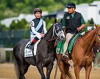 ELMONT, NY - JUNE 10:  Tapwrit #2  ridden by Jose Ortiz wins the Belmont Stakes at Belmont Park on June 10, 2017 in Elmont, New York. (Photo by Alex Evers/Eclipse Sportswire/Getty Images)
