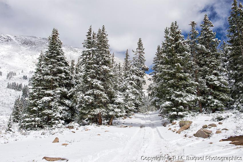 Snow in Colorado