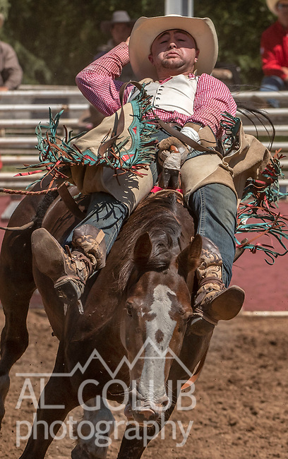 Bareback rider Tristan Hansen from Dillon, Montana at the 62nd annual Mother Lode Round-up on Sunday, May 12, 2019 in Sonora, California.  Photo by Al Golub