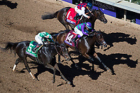 DEL MAR, CA - NOVEMBER 04: Carina Mia #1, ridden by Javier Castellano, Ami's Mesa #14, ridden by Luis Contreras, and Bar of Gold #5, ridden by Irad Ortiz Jr., face off on the the home stretch of Breeders' Cup Filly & Mare Sprint on Day 2 of the 2017 Breeders' Cup World Championships at Del Mar Thoroughbred Club on November 4, 2017 in Del Mar, California. (Photo by Ting Shen/Eclipse Sportswire/Breeders Cup)