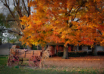 Autumn scene of house with wagon