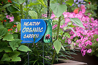 Healthy Organic Garden, sign in California backyard garden, raised bed