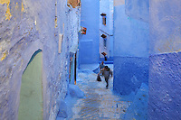 Boys climbing the steps of a narrow street painted blue in the medina or old town of Chefchaouen in the Rif mountains of North West Morocco. Chefchaouen was founded in 1471 by Moulay Ali Ben Moussa Ben Rashid El Alami to house the muslims expelled from Andalusia. It is famous for its blue painted houses, originated by the Jewish community, and is listed by UNESCO under the Intangible Cultural Heritage of Humanity. Picture by Manuel Cohen