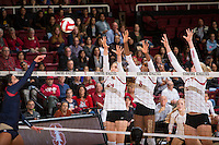 STANFORD, CA - October 14, 2016: Audriana Fitzmorris,Tami Alade,Kathryn Plummer at Maples Pavilion. The Arizona Wildcats defeated the Cardinal 3-1.