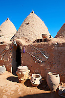 "Pictures of the beehive adobe buildings of Harran, south west Anatolia, Turkey.  Harran was a major ancient city in Upper Mesopotamia whose site is near the modern village of Altınbaşak, Turkey, 24 miles (44 kilometers) southeast of Şanlıurfa. The location is in a district of Şanlıurfa Province that is also named ""Harran"". Harran is famous for its traditional 'beehive' adobe houses, constructed entirely without wood. The design of these makes them cool inside. 17"