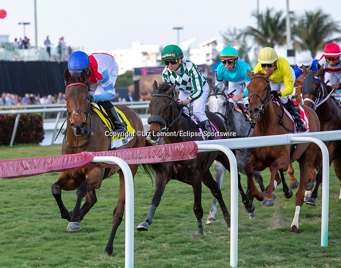 January 25, 2020: Mean Mary #4  with jockey Luis Saez on board (1st turn) wins the La Prevoyante G3 Stakes during the Pegasus World Cup Invitational at Gulfstream Park Race Track in Hallandale Beach, Florida. Liz Lamont/Eclipse Sportswire/CSM