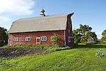 Weathered red wooden barn, , white trimmed windows and door, metal ventilator cupola with weather vane, North Dakota