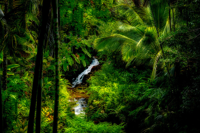 Waterfalls on Anini stream. Princeville Botanical Gardens. Kauai, Hawaii