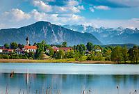Deutschland, Oberbayern, Iffeldorf: Blick ueber den Sengsee, der zu den Osterseen gehoert, auf Iffeldorf | Germany, Upper Bavaria, Iffeldorf: view across Seng Lake (part of the Easter Lakes) towards Iffeldorf