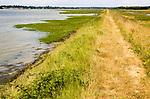 Summer landscape flood defence river wall path on River Deben tidal estuary, Sutton, Suffolk, England, UK
