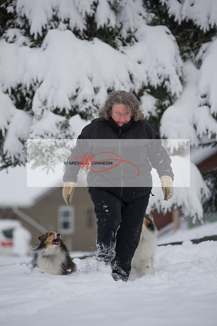 Eagle River resident April Coon enjoys the new snow with her two Shetland Sheepdogs Bitsy and Jenny Friday, Oct. 21.  Some 6 inches fell in the area overnight.  Photo for the Star by Michael Dinneen