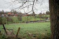 compact peloton<br /> <br /> 72nd Kuurne-Brussel-Kuurne 2020 (1.Pro)<br /> Kuurne to Kuurne (BEL): 201km<br /> <br /> ©kramon