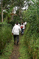 Hikers in a shade grown organic coffee lot at Finca Esperaza Verde  near Matagalpa, Nicaragua