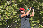 Gonzaga 1516 GolfW