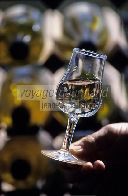 """Océanie/Australie/Australie Méridionale/Barossa Valley : Vins blancs de """"Grant Burge"""""""