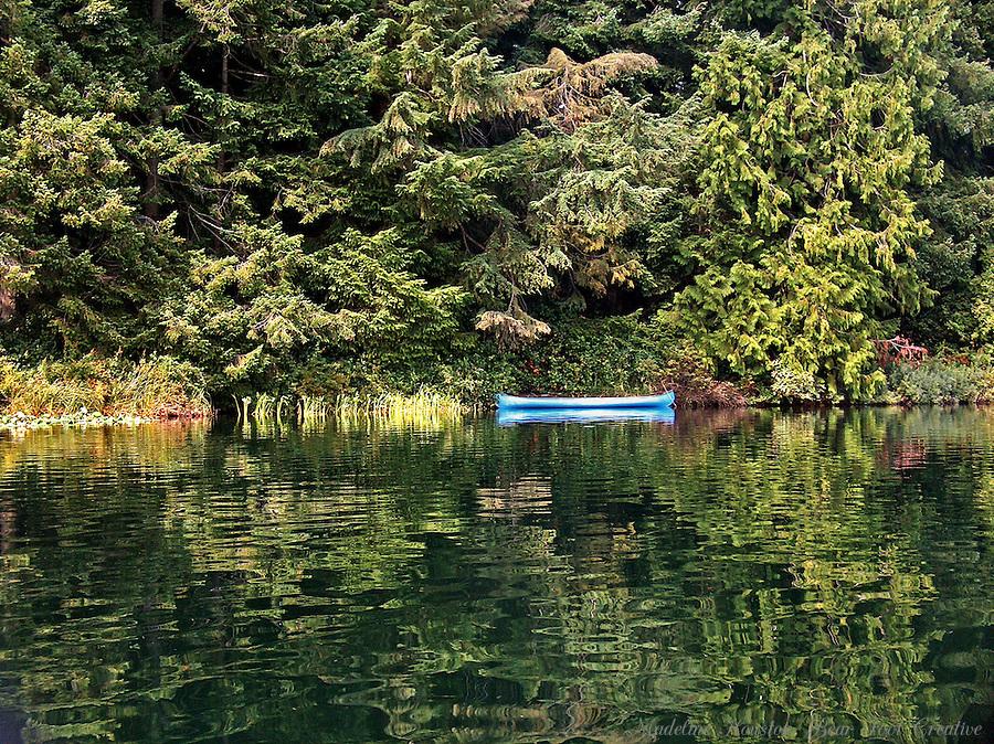 Millersylvania State Park, Washington, USA