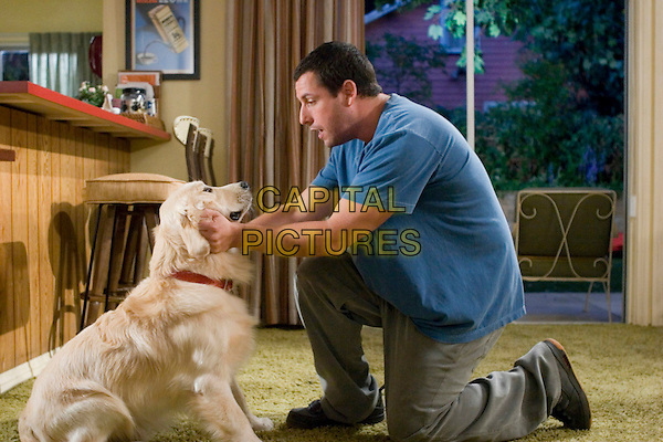 ADAM SANDLER.in Click.*Editorial Use Only*.www.capitalpictures.com.sales@capitalpictures.com.Supplied by Capital Pictures.