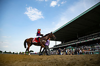 06-08-18 Belmont Gold Cup
