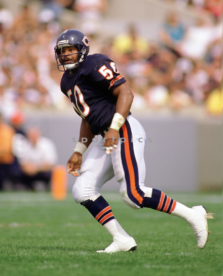Chicago Bears Mike Singletary (99) sideline portrait from his 1988 season with the Chicago Bears. Mike Singletary played for 12 season, all with the Chicago Bears, was a 10-time Pro Bowler and was inducted to the Pro Football Hall of Fame in 1998.(SportPics)