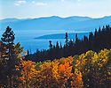 Lake Tahoe Scenic Fall Colors