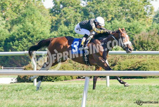 Pontius P winning at Delaware Park on 9/23/15