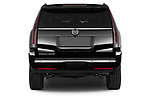 Straight rear view of a 2018 Cadillac Escalade ESV 2WD Luxury 5 Door SUV Rear View  stock images