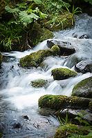 Germany, Thuringia, near Brotterode-Trusetal: river Truse | Deutschland, Thueringen, bei Brotterode-Trusetal: das Fluesschen Truse