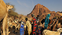 Toubou women and their cattle around the Gole well