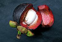 Alimentos. Frutas. Mangostim. Foto de Manuel Lourenço.