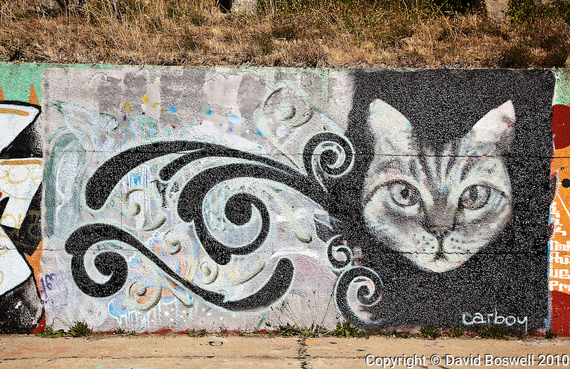 Graffiti in Bariloche, Argentina.