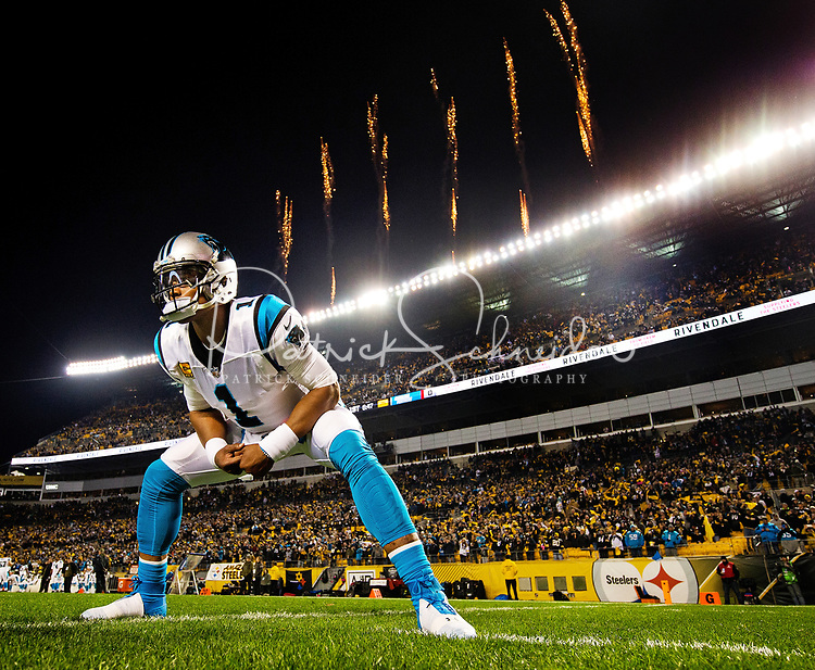 Photography of the Carolina Panthers v. The Pittsburgh Steelers at Heinz Field in Pittsburgh, PA.<br /> <br /> Charlotte Photographer - PatrickSchneiderPhoto.com