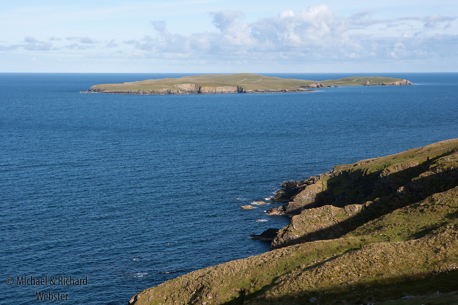 The island of Mousa is an RSPB nature reserve mainly on account of the large number of nesting Storm Petrels that inhabit its stone walls, boulder strewn beaces and of couse the walls of the Iron Age Broch.