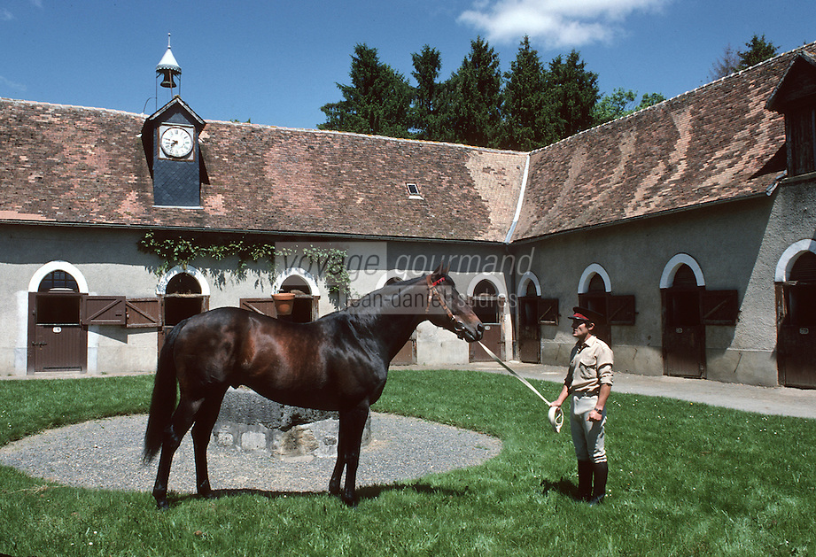 Europe/France/Limousin/19/Corrèze/Pompadour : Les haras [Non destiné à un usage publicitaire - Not intended for an advertising use]<br /> PHOTO D'ARCHIVES // ARCHIVAL IMAGES<br /> FRANCE 1990