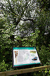 Pix: Shaun Flannery/shaunflanneryphotography.com...COPYRIGHT PICTURE>>SHAUN FLANNERY>01302-570814>>07778315553>>..17th June 2011.................Information board for Sprotbrough Flash Nature Reserve situated on the Trans Pennine Trail at Sprotbrough, Doncaster.