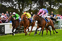 Winner of Bathwick Tyres Fillies' Handicap (Class 4), So Sleek ridden by Jamie Spencer and trained by Luca Cumani  during Afternoon Racing at Salisbury Racecourse on 7th August 2017