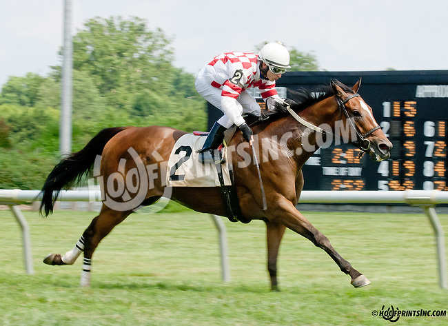 Coturnix winning at Delaware Park on 7/12/14