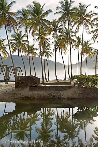 Maracas beach river reflections of coconut palms, a steel bridge - early morning