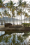 Maracas beach river reflections of coconut palms, a steel bridge - early morning