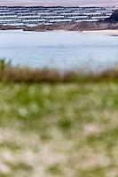 France, Côtes-d'Armor (22), Côte d'Emeraude, Saint-Cast-le-Guildo: Vue sur la zone conchycolle depuis le Pointe de Saint-Cast // France, Cotes d'Armor, Cote d'Emeraude (Emerald Coast), Saint Cast le Guildo,   View conchycolle area since the Pointe Saint-Cast